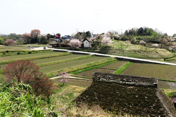八塔寺ふるさと村